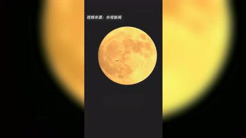 86倍长焦镜头!飞机从月亮前滑过你见过吗?
