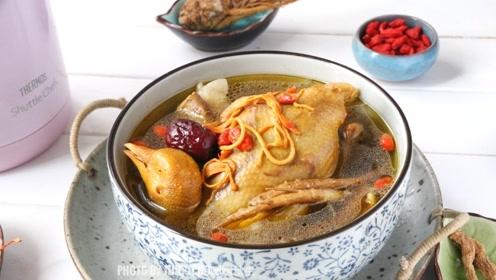 秋季养生喝鸽子汤,钙含量是鸡肉15倍,加上红枣萝卜效果更好