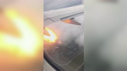 乘客实拍:飞机撞上鸟群引擎起火 客舱充满焦味乘客失声尖叫