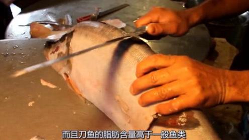 国外大厨刀工多恐怖?国外刀鱼竟然这么大,小哥用这种方法切块