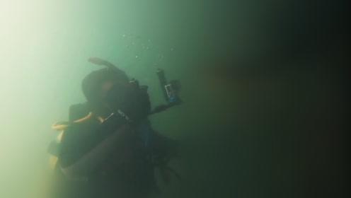 7米长巨蟒邂逅潜水者 蛇信吐到镜头上透着杀气