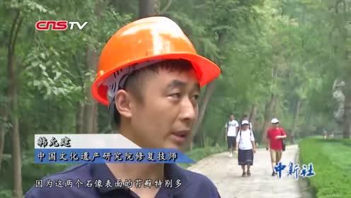 """南京明孝陵600多岁神道石像首次大规模""""美容"""""""