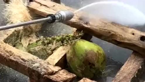 今天天气太热,给椰子换个发型,小伙这创意简直不可思议!