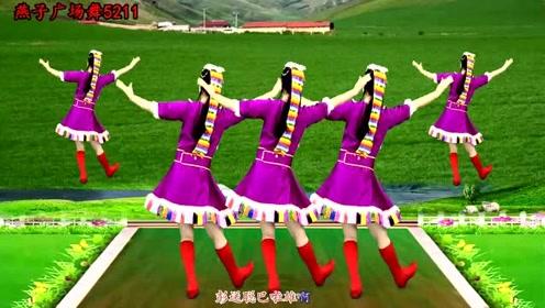 藏族民歌广场舞《祝酒歌》草原民族风健身舞,32步附分解