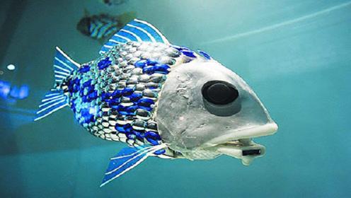 """中国民企发明""""间谍鱼"""",临海投放100条,潜艇全能被监控"""