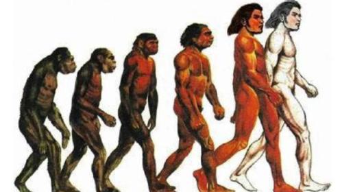 """地球上原没有人类,第一个""""人""""是怎么来的?涨知识了"""