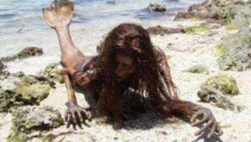 美人鱼真的存在?3000年前人鱼化石被发现,童话故事将成真
