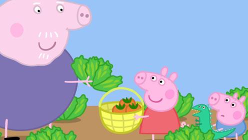 小猪佩奇弟弟乔治从菜园里摘了茄子 佩奇做了茄子萝卜 玩具故事