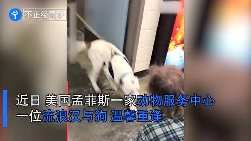 流浪汉和狗子走散后重逢,狗子激动到扑倒主人