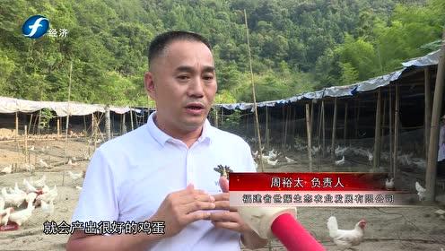《今日八闽》福建省世耀生态农业发展有限公司
