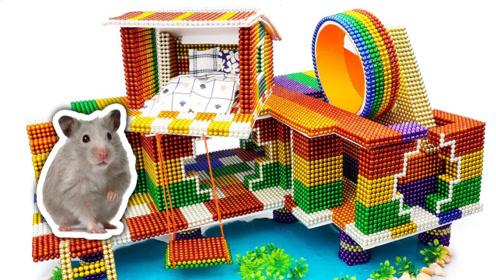 老外为仓鼠打造巴克球豪宅,自带秋千和泳池,一起来见识下