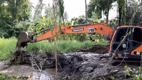 这司机是高手,挖掘机在这种淤泥场地干活,不怕被困住吗?