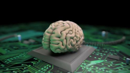如果将人的大脑和电脑的内存容量作对比,相当于电脑的多少内存?