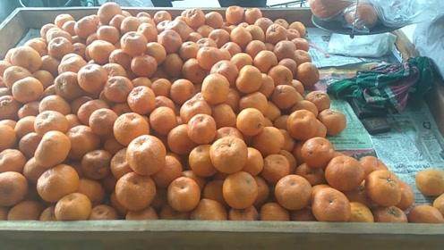 喜欢吃橘子的人要多留意了,我也是现在才知道,看过告诉身边人