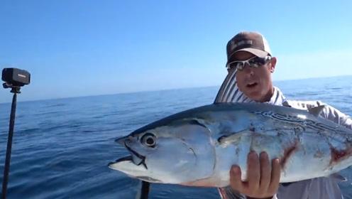 """地球上最坚硬的鱼,可以做成一把刀,却被日本人当成""""宝贝"""""""