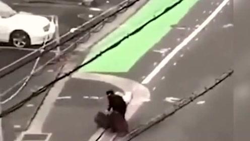 实拍日本!男子上班路上被野猪撞飞,遭多次顶撞撕咬后尖叫逃跑!