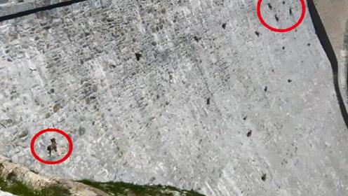 古老的大坝上密密麻麻,原以为是人在施工,走进一看根本不是人