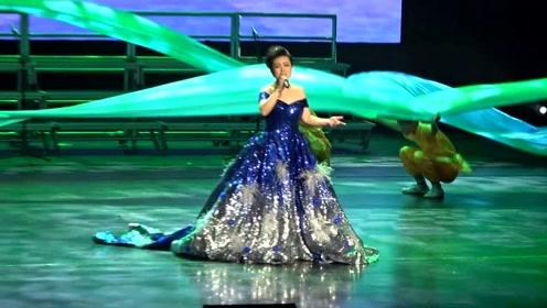 亲吻祖国来自大沽河的歌 刘洲华独唱音乐会在京成功举办