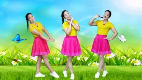 小芳广场舞《野花香》时尚流行32步可爱风