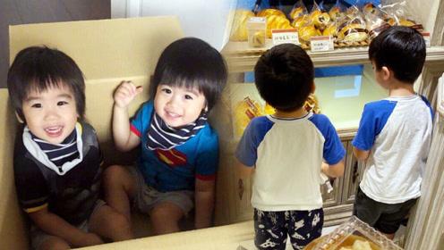 林志颖带双胞胎买面包,两个小家伙软萌可爱,令人想起当年的黑米