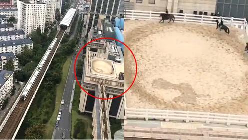 """房顶赛马!上海现高楼房顶""""赛马""""?网友:有钱人的快乐想象不到"""