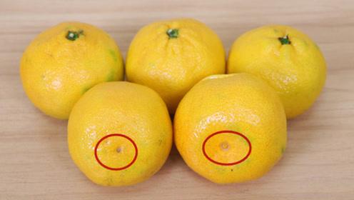 """橘子有个""""小机关"""",甜不甜一眼认出,爱吃的赶紧学,管用"""