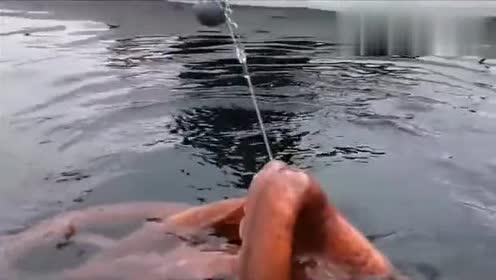 这么大的章鱼都被大哥钓上来了,也太幸运了!