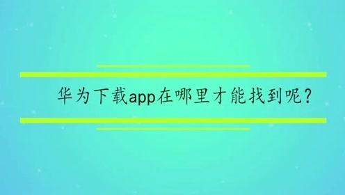 华为下载app在哪里才能找到呢?
