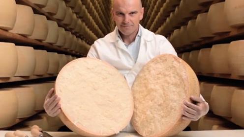 奶酪是西方人特别爱吃的美食,但为什么在中国却没有流行起来?