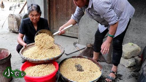"""农村奶奶70年的""""老手艺"""",这样的美食又臭又下饭,你敢吃几碗?"""