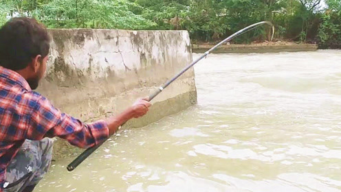 雨过天晴,钓友跑到泄洪口下游钓鱼,结果连中两条野货,估计这里有鱼窝