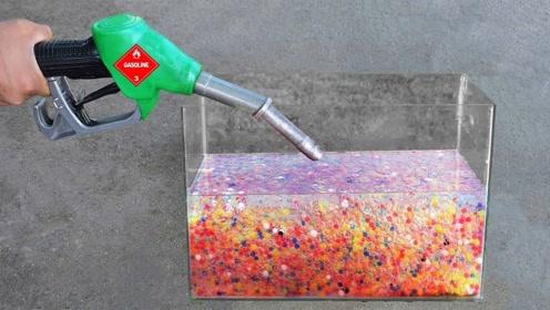 在汽油中浸泡的水宝宝还能长大吗? 老外好奇测试,结果难以置信
