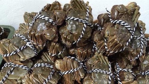 螃蟹可不能放在冷冻室保鲜,教你个简单窍门,放7天照样活力十足