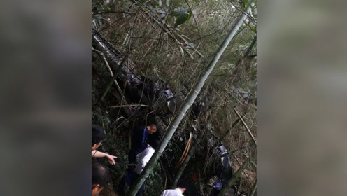 浙江一直升机坠落致机上2名飞行员死亡:系执行航空物探项目
