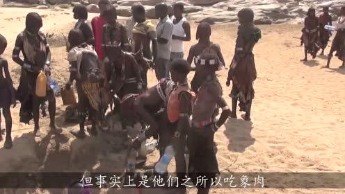 非洲人连大象都敢吃,原因竟然是这样的,看完整个人都不好了