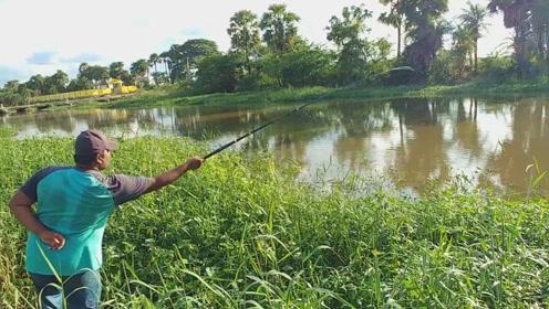 对于钓友来说,钓个鱼就是分分钟的事情,站在旁边看着都觉得过瘾