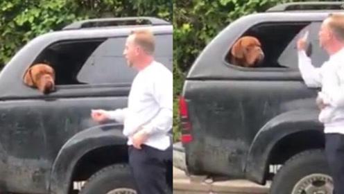 残忍 男子殴打别人宠物狗趁其不备扇耳光