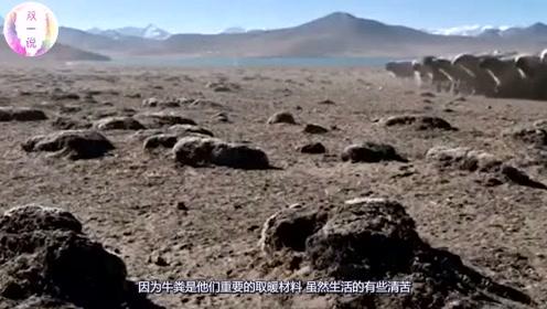 西藏最接近天空的村庄,村民平均寿命仅有40岁,他们却非常留恋