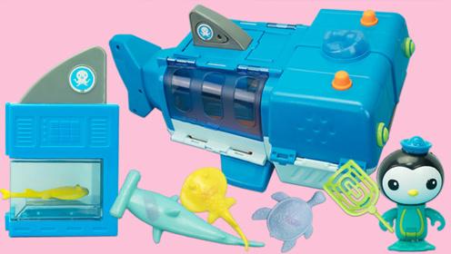 海底小纵队玩具故事 皮医生驾驶鲸鲨艇前往大堡礁救援