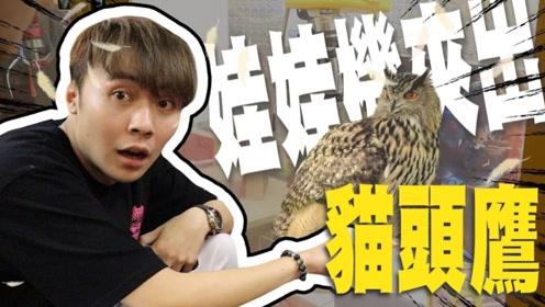 【OurTV】娃娃机夹猫头鹰音箱!现场唱卡拉OK!