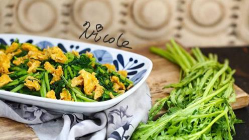 秋冬咳嗽就怕这菜,碰到多买一些,清香下饭,降脂止咳,胖子越吃越瘦!