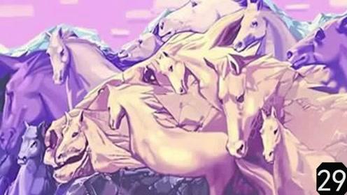 测一测:图中藏着多少匹马呢?找到10匹是高手