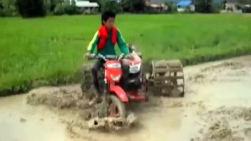 奔驰在泥田里的三轮拖拉机,让耕田也有一种驾驶越野车般的快感