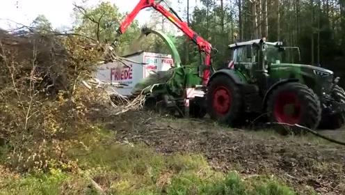 把粉碎机开进森林,伐木剩下的树枝也利用起来了