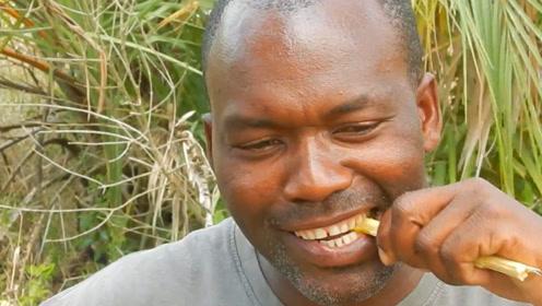 为什么非洲人的牙齿都很白?答案你绝对想不到,看完大开眼界!