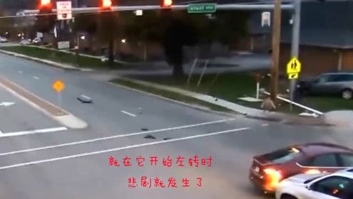 阴阳两隔!父子俩过马路时儿子目睹爸爸被撞飞,监控拍下残酷的瞬间