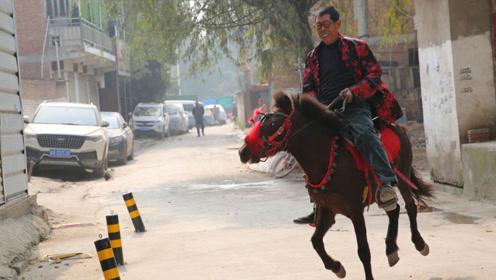 西安七旬老人以前在生产队吆马车,老了想玩马,花6千买了匹矮马