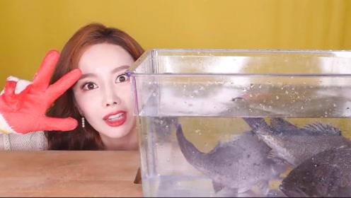 小姐姐想吃生鱼片,未动手就被活鱼吓出表情包,反应简直太真实!