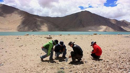 西藏发现4万年前遗址,改写人类历史,专家:不可思议!