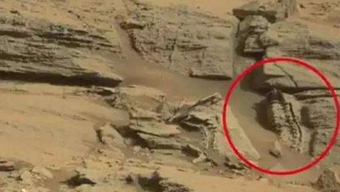 火星曾经有恐龙?好奇号从火星拍摄一张照片,网友:好像恐龙化石